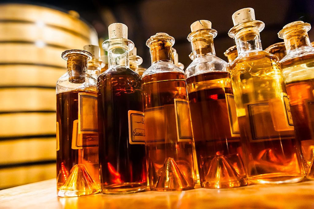 Cognac, terre d'hommes et de passion