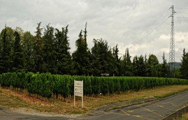 Domaine de l'Oisellerie