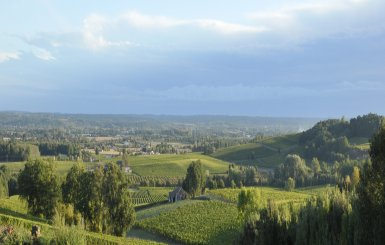 Domaine du Haut Montlong