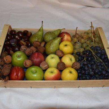"""Panier de fruits de saison """"famille"""" - Ferme du bon goût"""