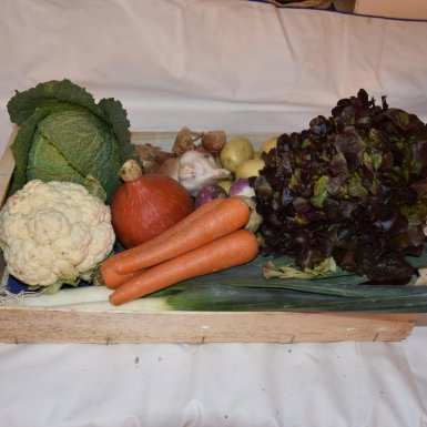 """Panier de légumes de saison """"famille"""" - Ferme du bon goût"""